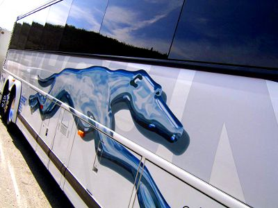 Photo of a Greyhound Bus